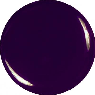 Gel Color Viola Melanzana Scuro 81