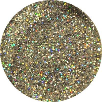 Polvere Super Glitter Argento