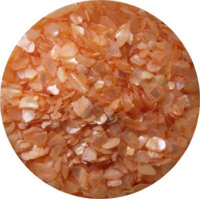 Scaglie di Conchiglia Arancione