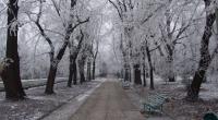 tendenze unghie per l'inverno